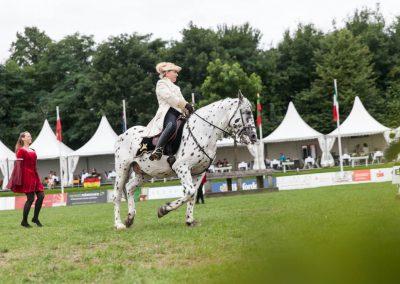 Pferde und Tänzer_Web-113