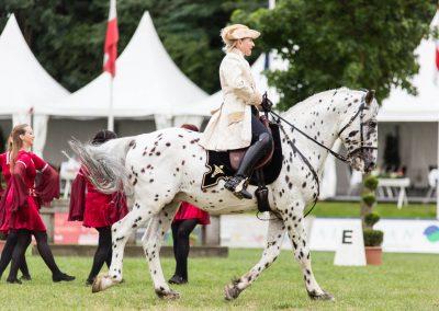 Pferde und Tänzer_Web-128