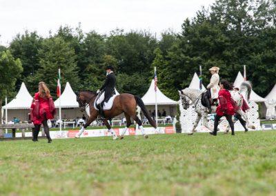 Pferde und Tänzer_Web-114